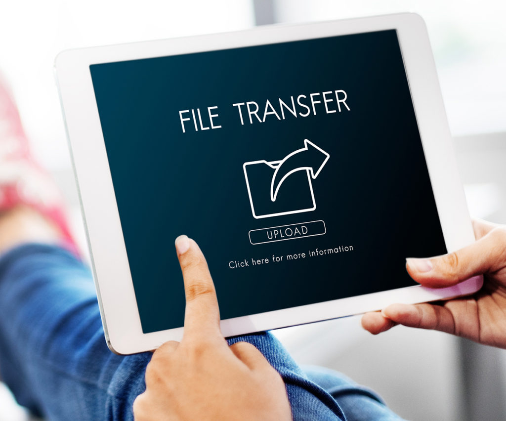 transfer a website from one cpanel to another